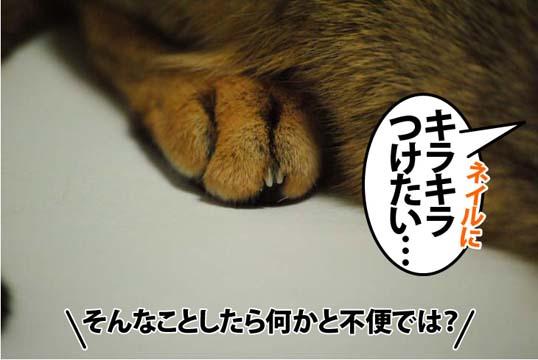20120616_02.jpg