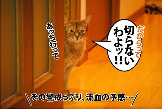 20120616_03.jpg