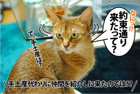 20120621_02.jpg