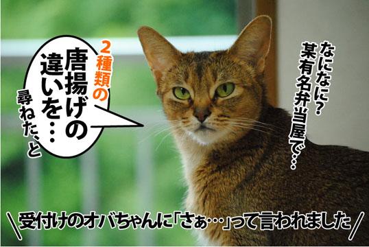 20120626_03.jpg