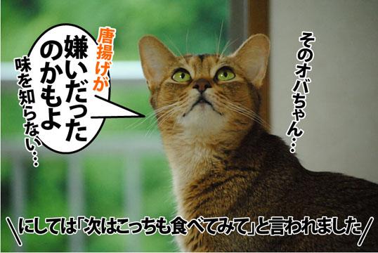 20120626_04.jpg