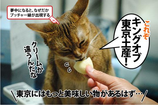 20120627_03.jpg