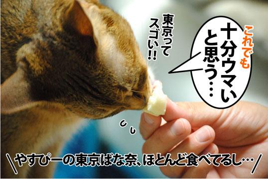 20120627_04.jpg