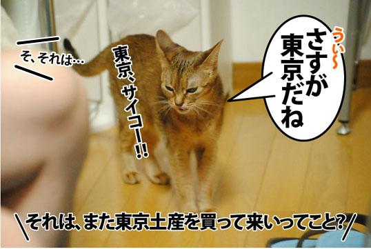 20120627_05.jpg