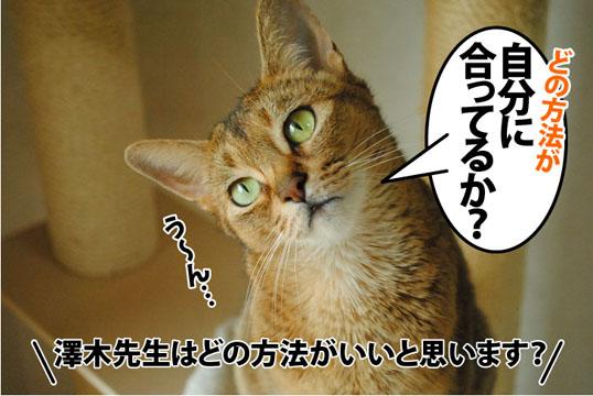 20120629_02.jpg