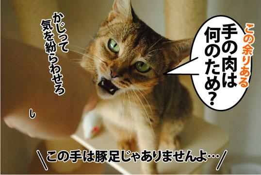 20120629_05.jpg