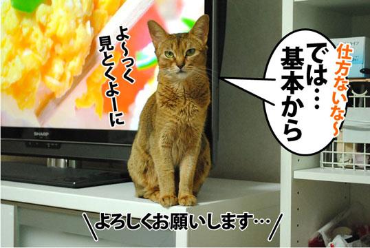 20120704_04.jpg