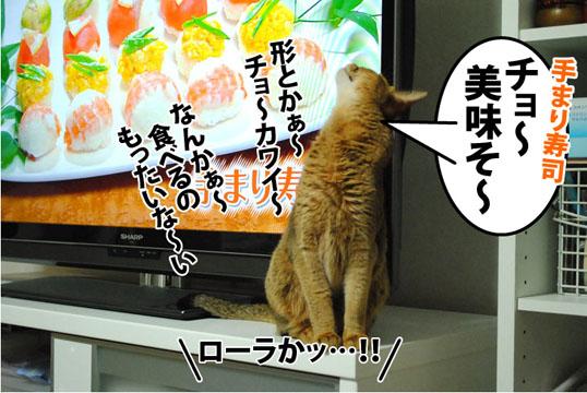 20120704_05.jpg