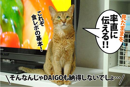 20120704_06.jpg