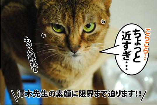 20120705_01.jpg