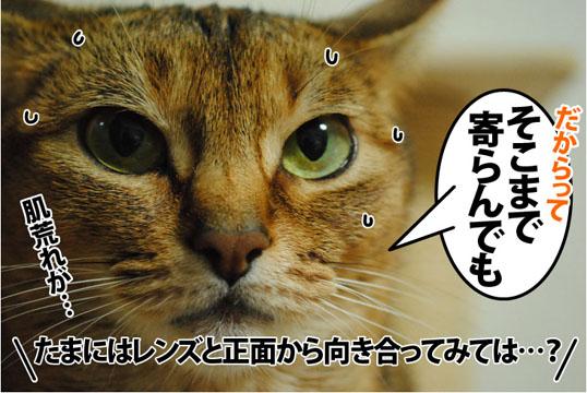 20120705_02.jpg