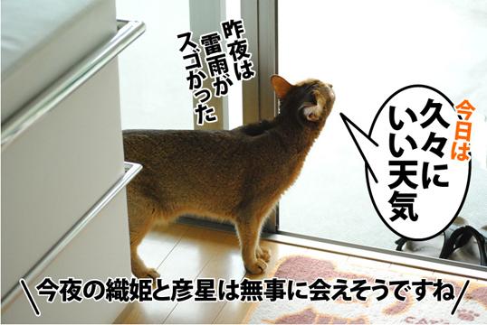 20120707_01.jpg