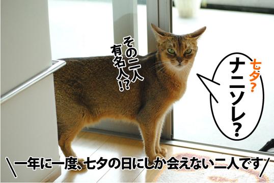 20120707_02.jpg