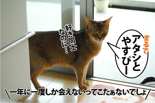 20120707_03.jpg