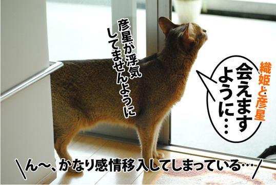 20120707_04.jpg
