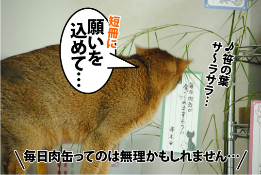 20120708_04.jpg