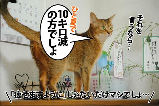 20120708_05.jpg