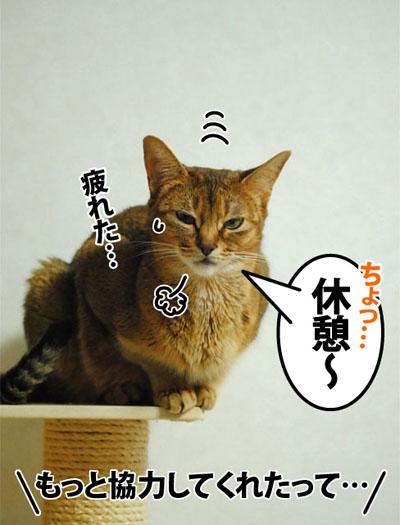 20120710_06.jpg