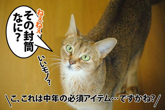 20120712_01.jpg