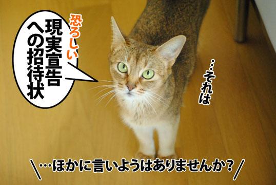 20120712_03.jpg