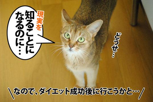 20120712_04.jpg