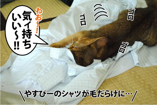 20120719_01.jpg