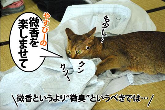 20120719_03.jpg