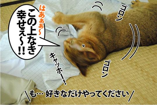 20120719_04.jpg