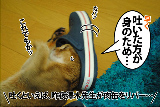 20120720_04.jpg