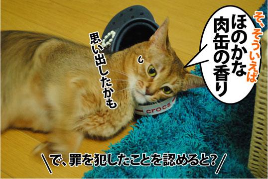20120720_05.jpg