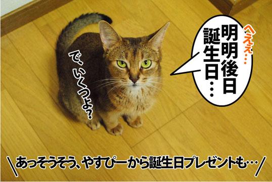 20120721_01.jpg
