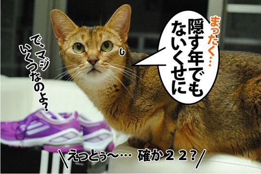 20120721_04.jpg