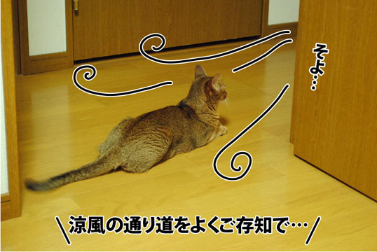 20120723_04.jpg