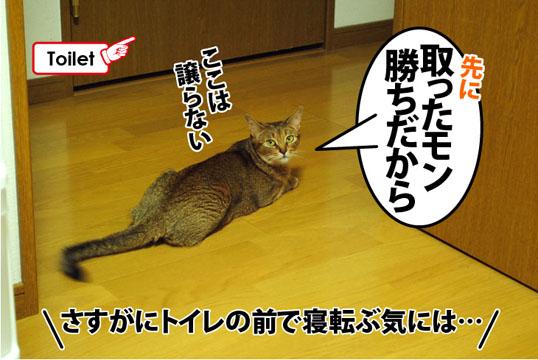 20120723_05.jpg