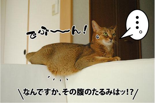 20120725_02.jpg