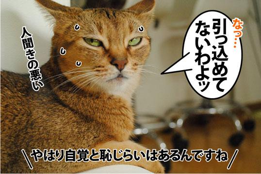 20120725_04.jpg