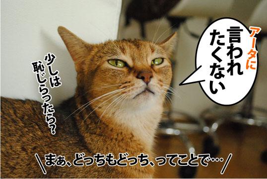 20120725_05.jpg