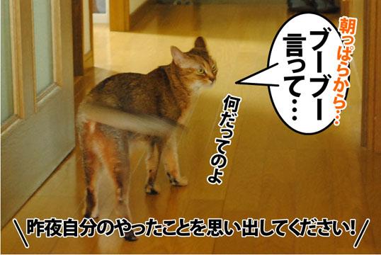 20120731_01.jpg