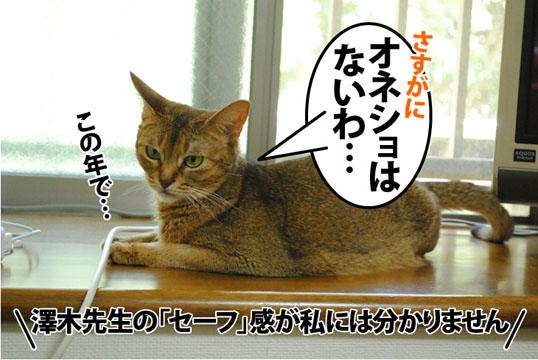 20120731_04.jpg
