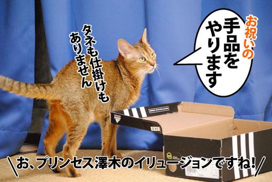 20120802_01.jpg