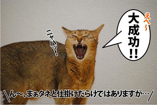 20120802_06.jpg