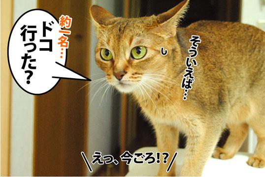 20120820_01.jpg