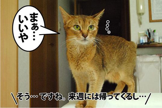 20120820_03.jpg