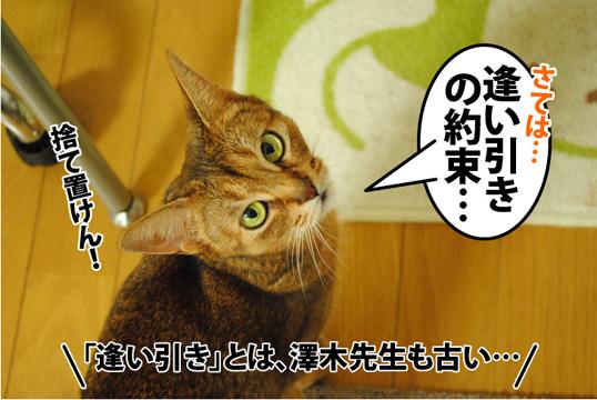 20120822_02.jpg