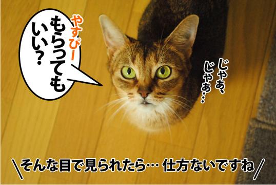 20120822_03.jpg
