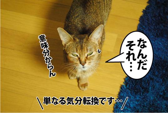 20120824_02.jpg
