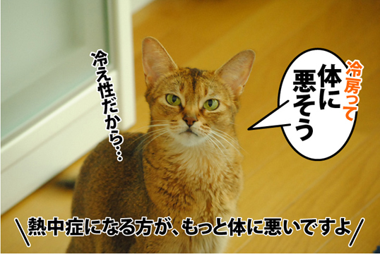 20120826_02.jpg