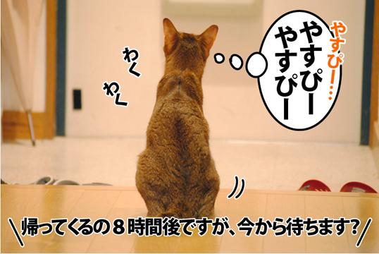 20120829_02.jpg
