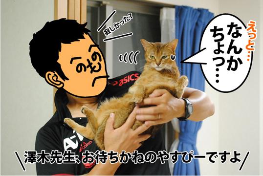 20120830_02.jpg