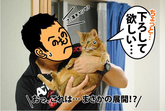 20120830_03.jpg